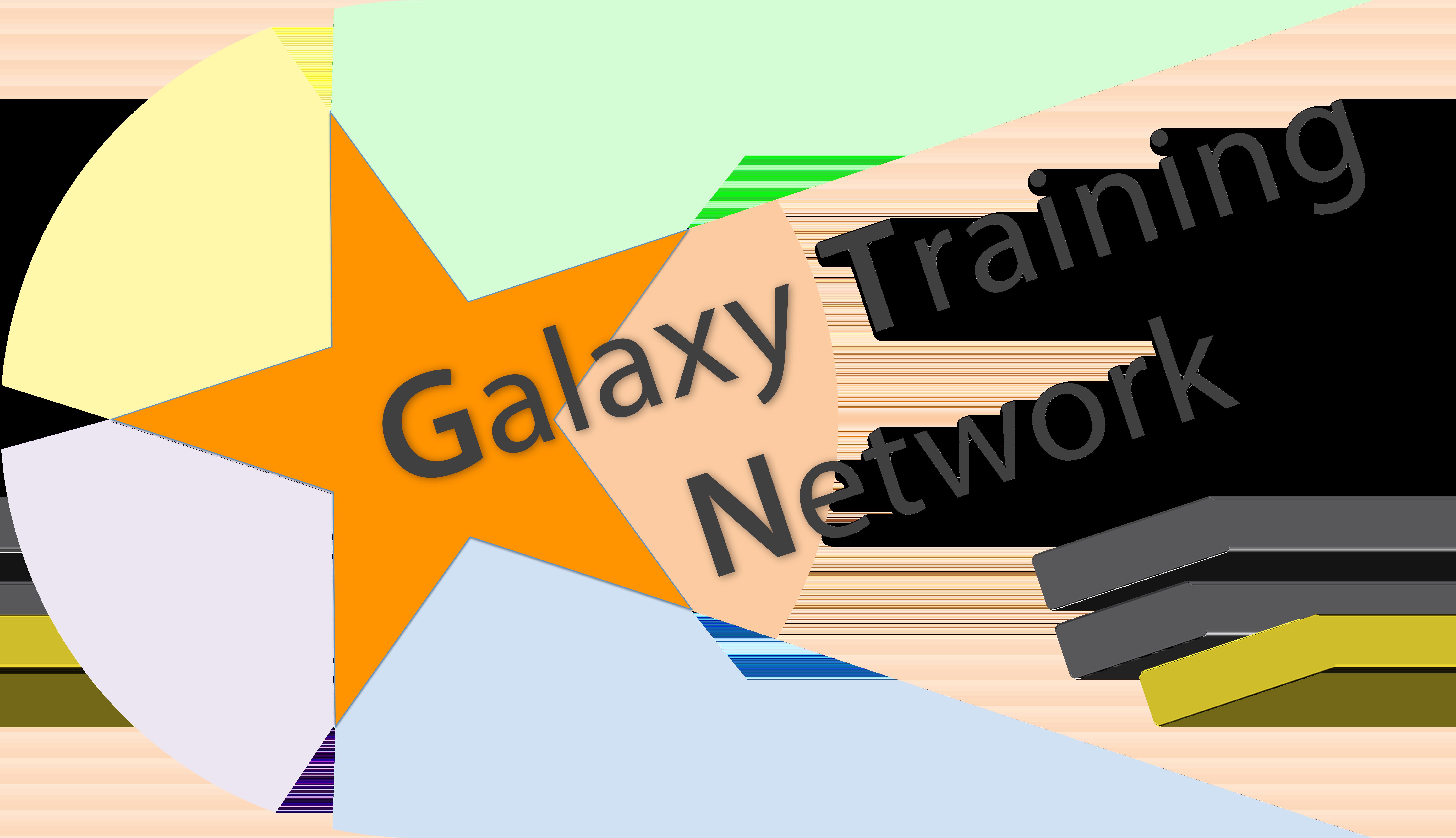 Galaxy Training Network logo