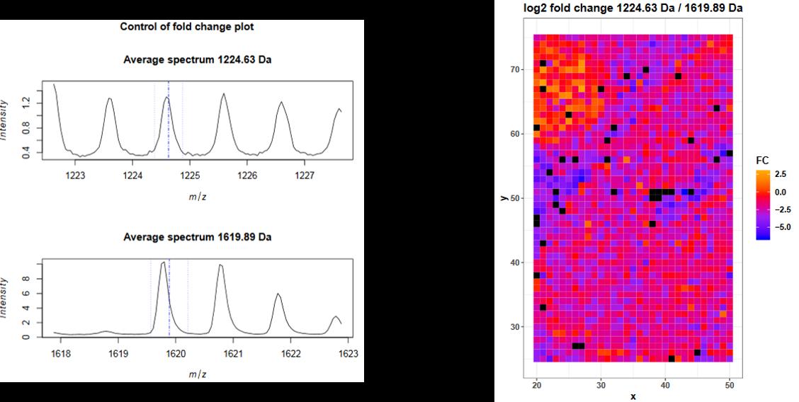 Mass spectrometry imaging: Loading and exploring MSI data