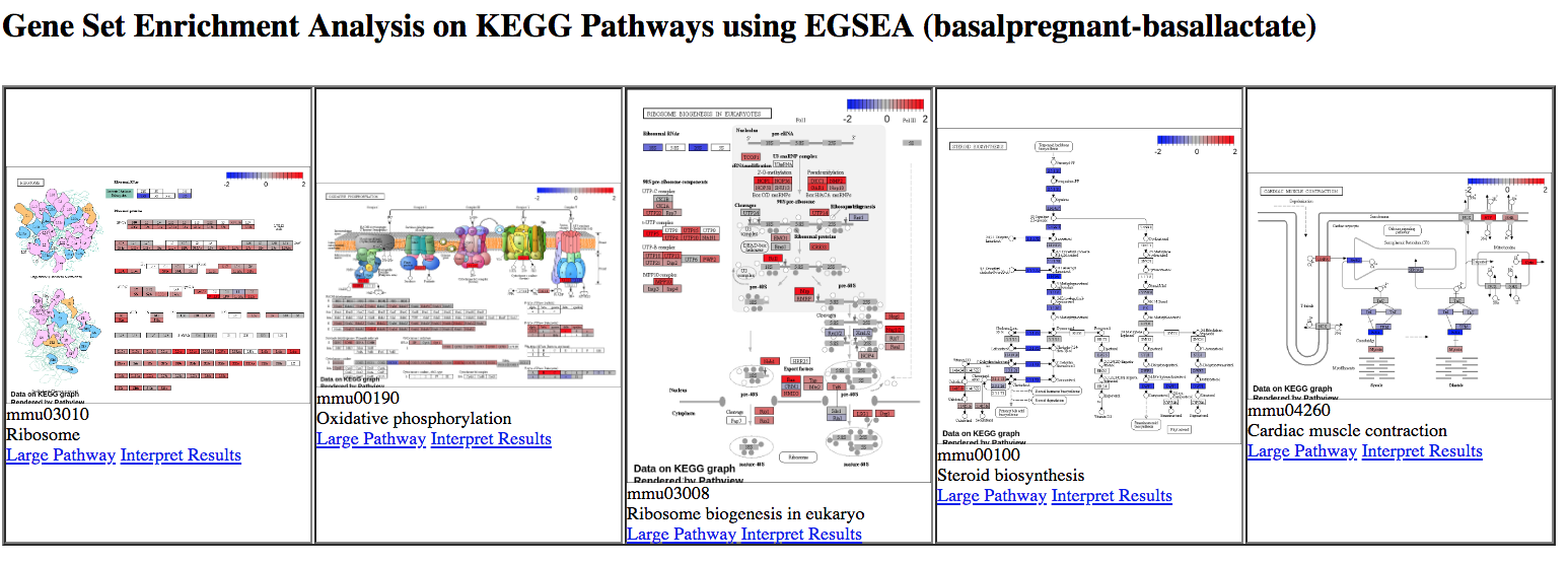 RNA-seq genes to pathways